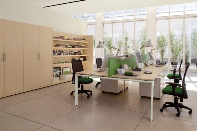 feng shui home office. open plan office with plant decor feng shui home