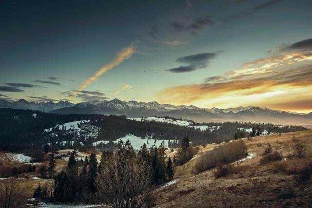Earthy Landscape