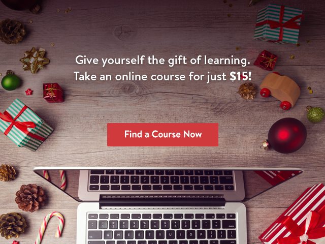 Udemy Christmas Promo