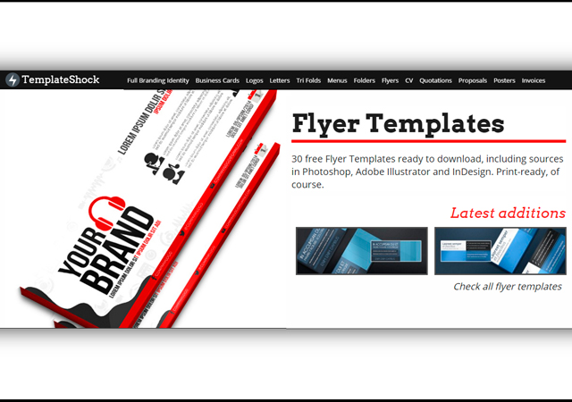 Campaign Flyer Templates Collection
