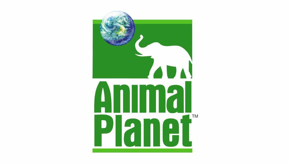 Animal Planet Logo Old