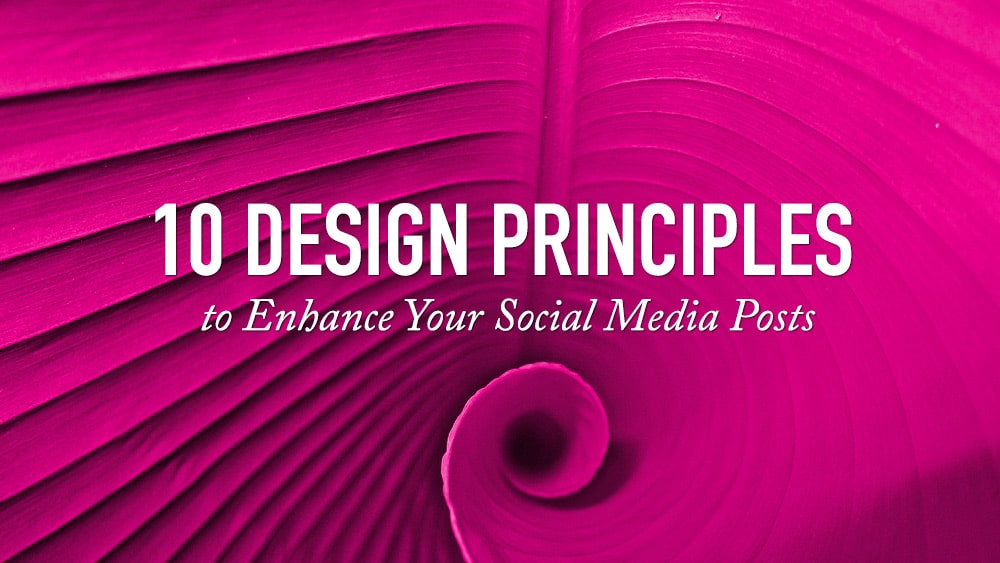 Design Principles for Social Media