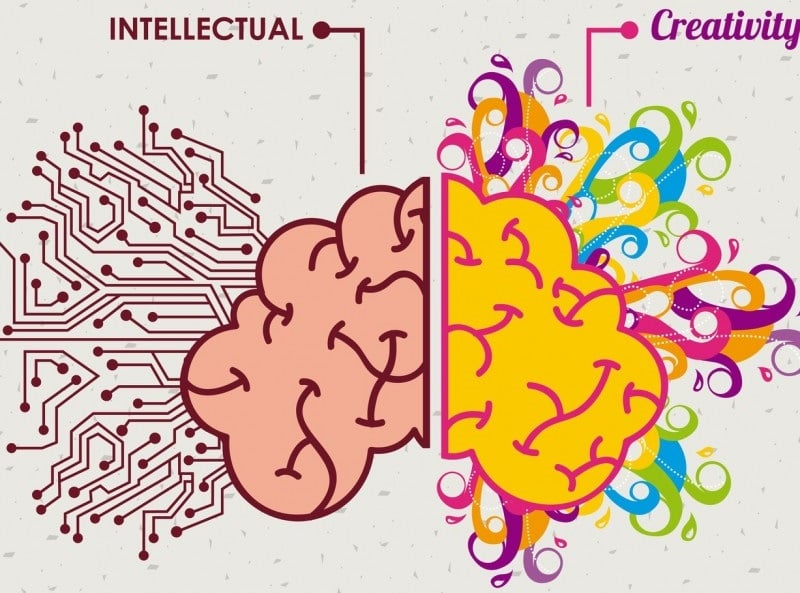 Habits of Creativity - Brain