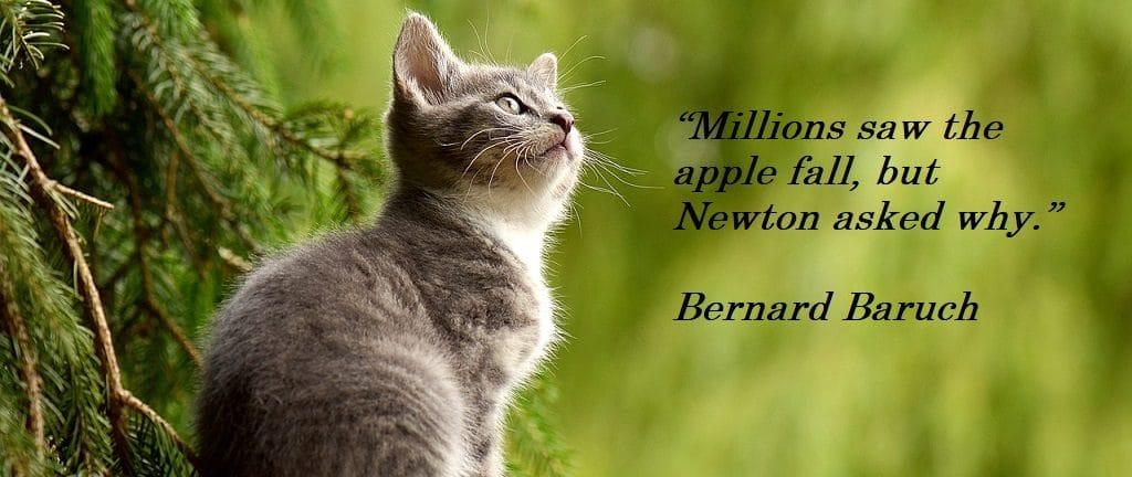 Creativity Quote Bernard Baruch