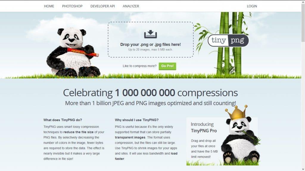 good web design company in chennai