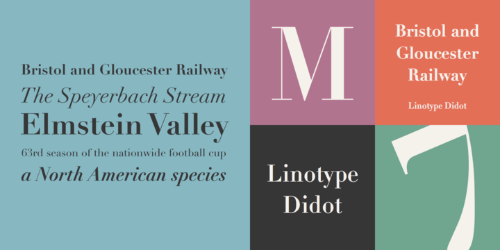 Linotype Didot Classic Font for Logo Design