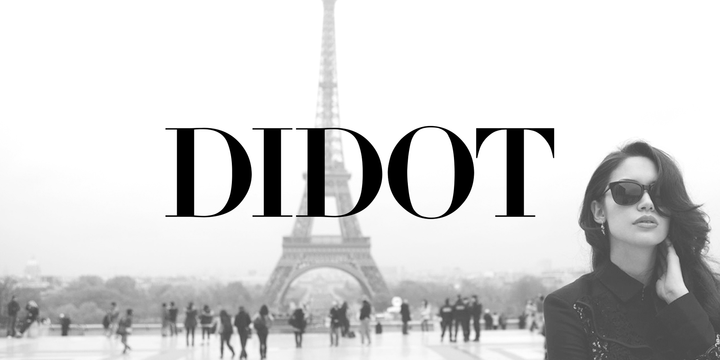 Linotype Didot Classic French Font for Logo Design