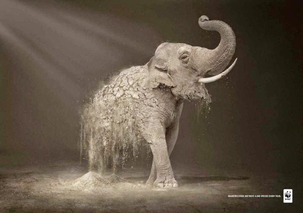 Inspirational Ad- World Wildlife Fund