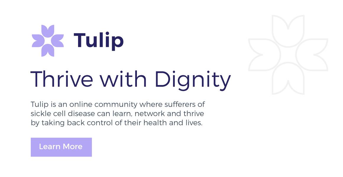 Tulip Typography