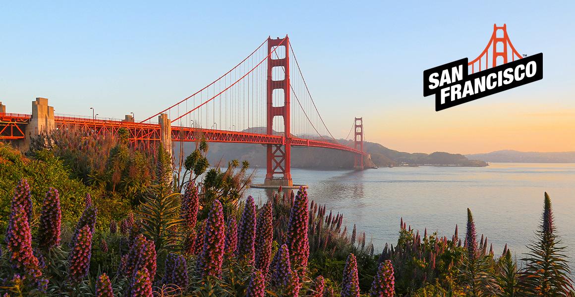 San Francisco Bridge and Logo