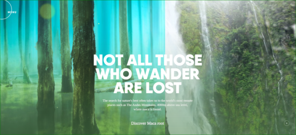 Rainforest Foods Homepage - Example of Parallax Scrolling in Web Design - Web Design Trends 2020