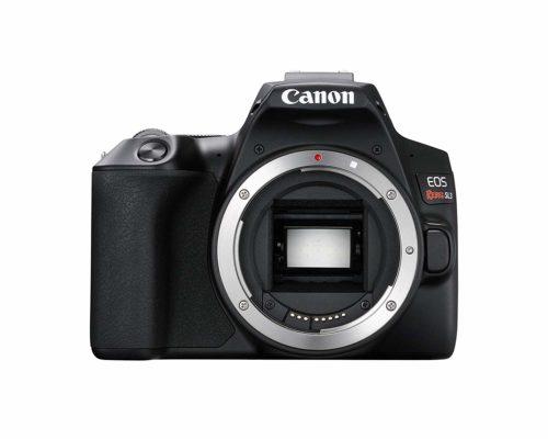 Mejores cámaras para diseñadores gráficos y creativos - Canon EOS Rebel SL3 / EOS 250D