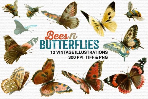 Bees N Butterflies Vintage Illustrations
