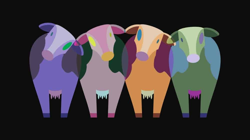 Colourful cows image in original colour combinations