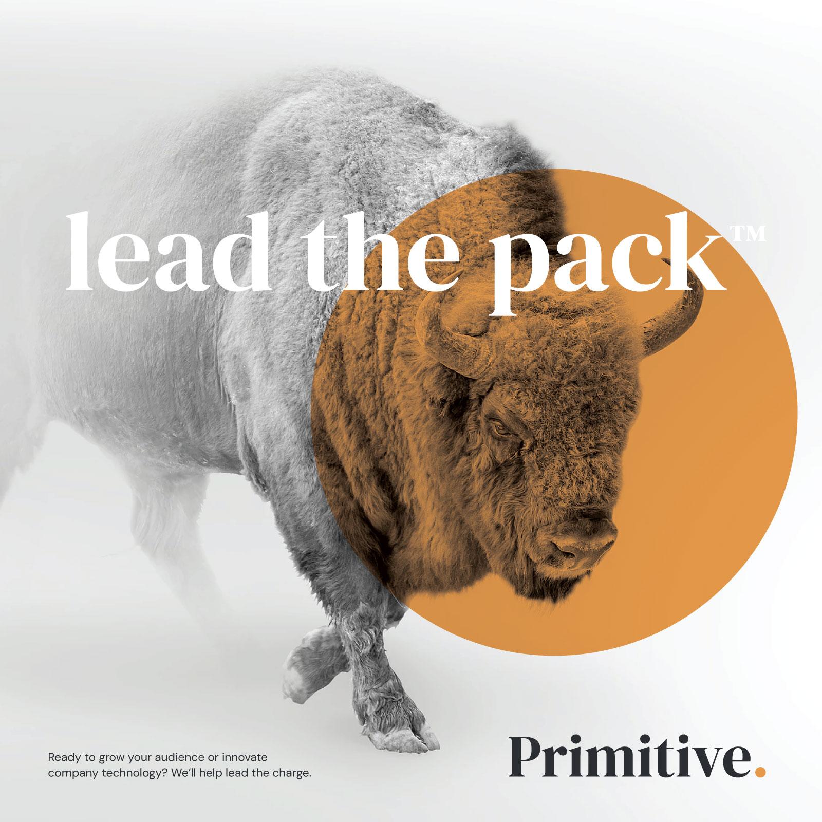 Primitive Ad Poster