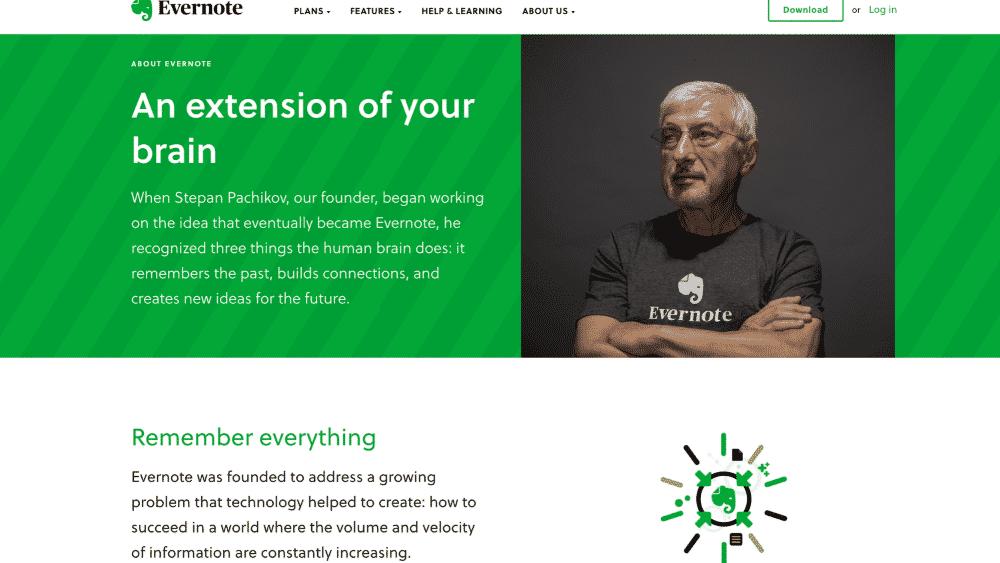 Website design using green for colour psychology