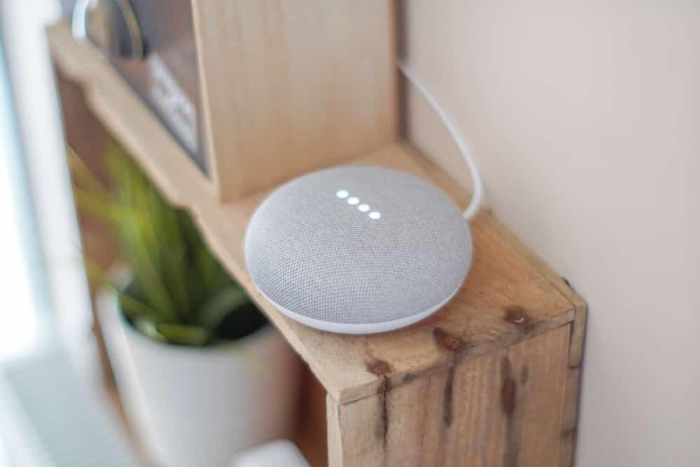 Google Home Mini voice search