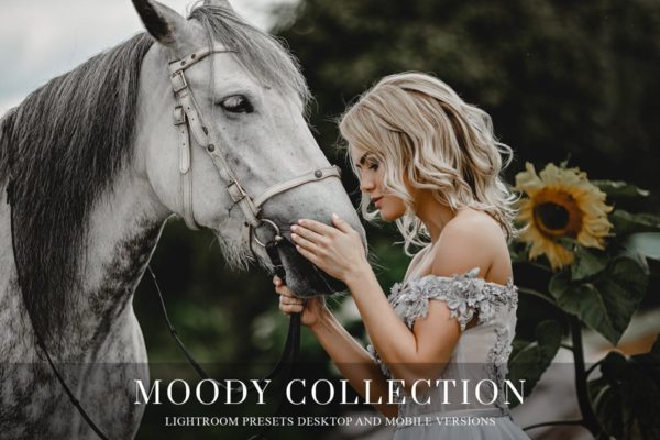 Moody presets for Lightroom + more