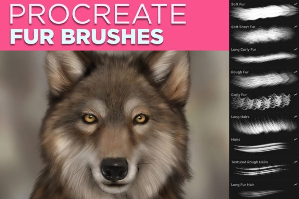 Procreate Fur Brushes