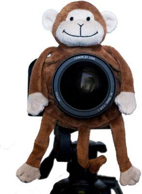 Shutter Huggers Monkey