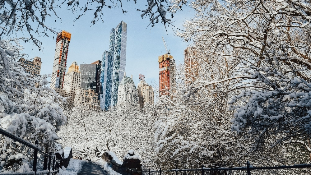 Wintertime in NYC - Boosting Productivity and Creativity