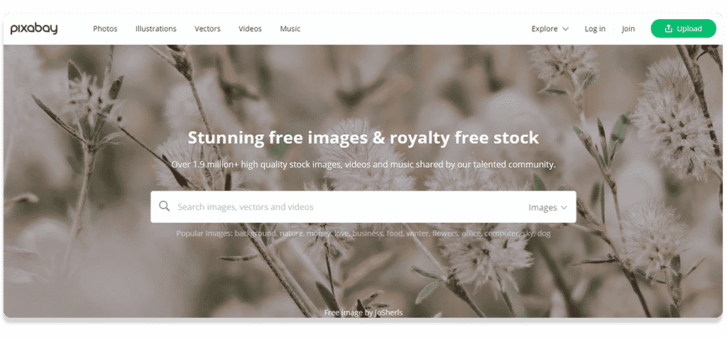 Pixabay free stock images for blogs