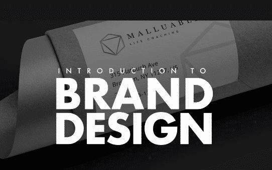 The Branding Masterclass The Entire Brand Design Process