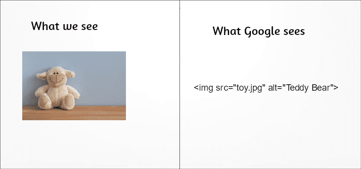 How Google sees image alt tags