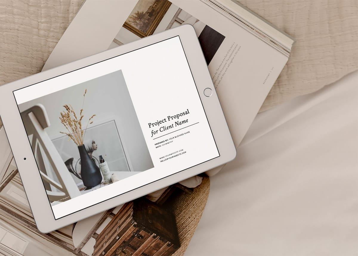 Professional Design Business Template - Client Proposal Template