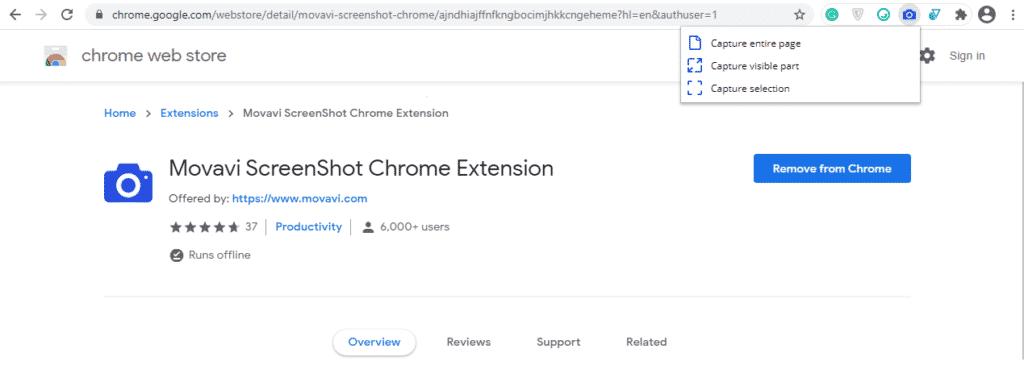 Movavi ScreenShot browser extension for social media marketing