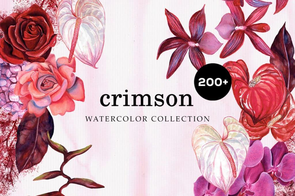 Crimson Floral Collection