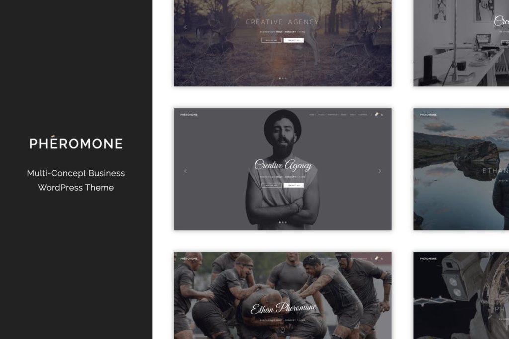 Pheromone - Creative Multi-Concept WordPress Theme
