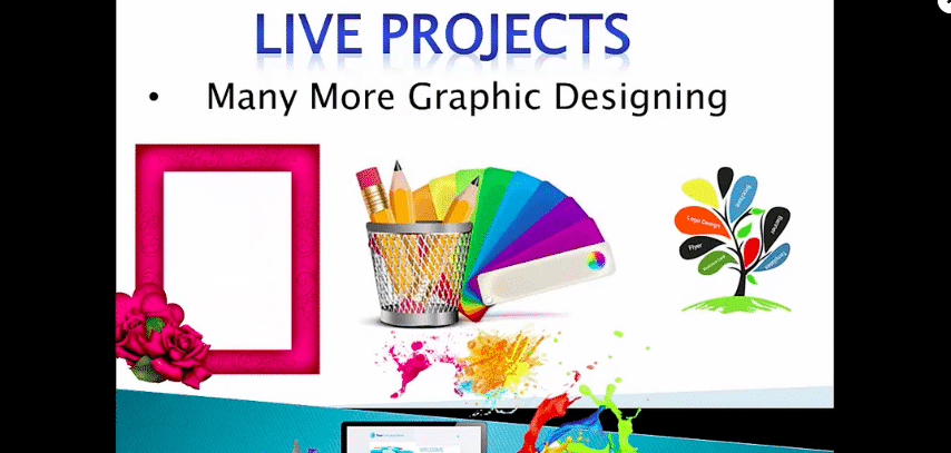 Adobe Illustrator Video Course With Live Practical Projects