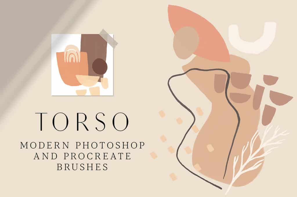 Torso – Photoshop and Procreate Stamp Brushes