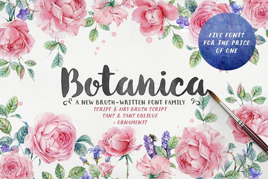 Botanica Brush Font Family