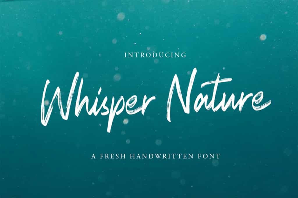 Whisper Nature Brush Script Font