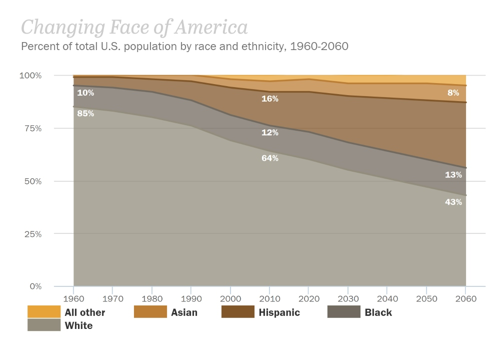Changing Face of America Data Graph