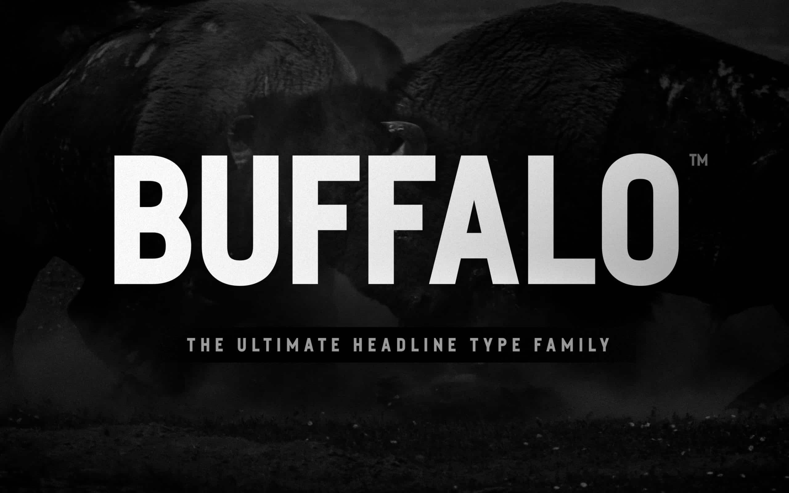 Buffalo - Best Headline Font